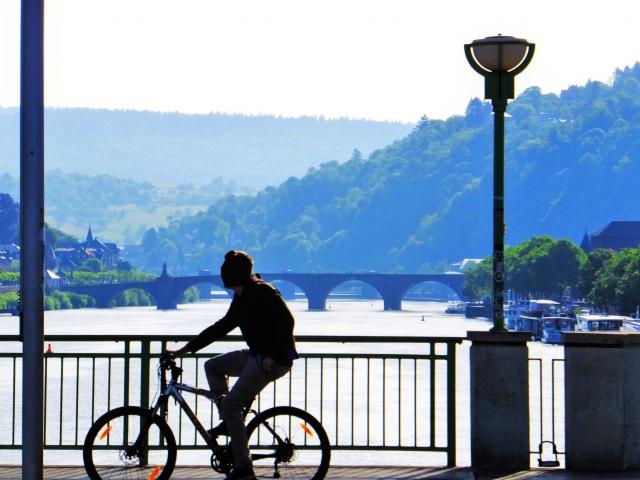 自転車 二キロ 時間